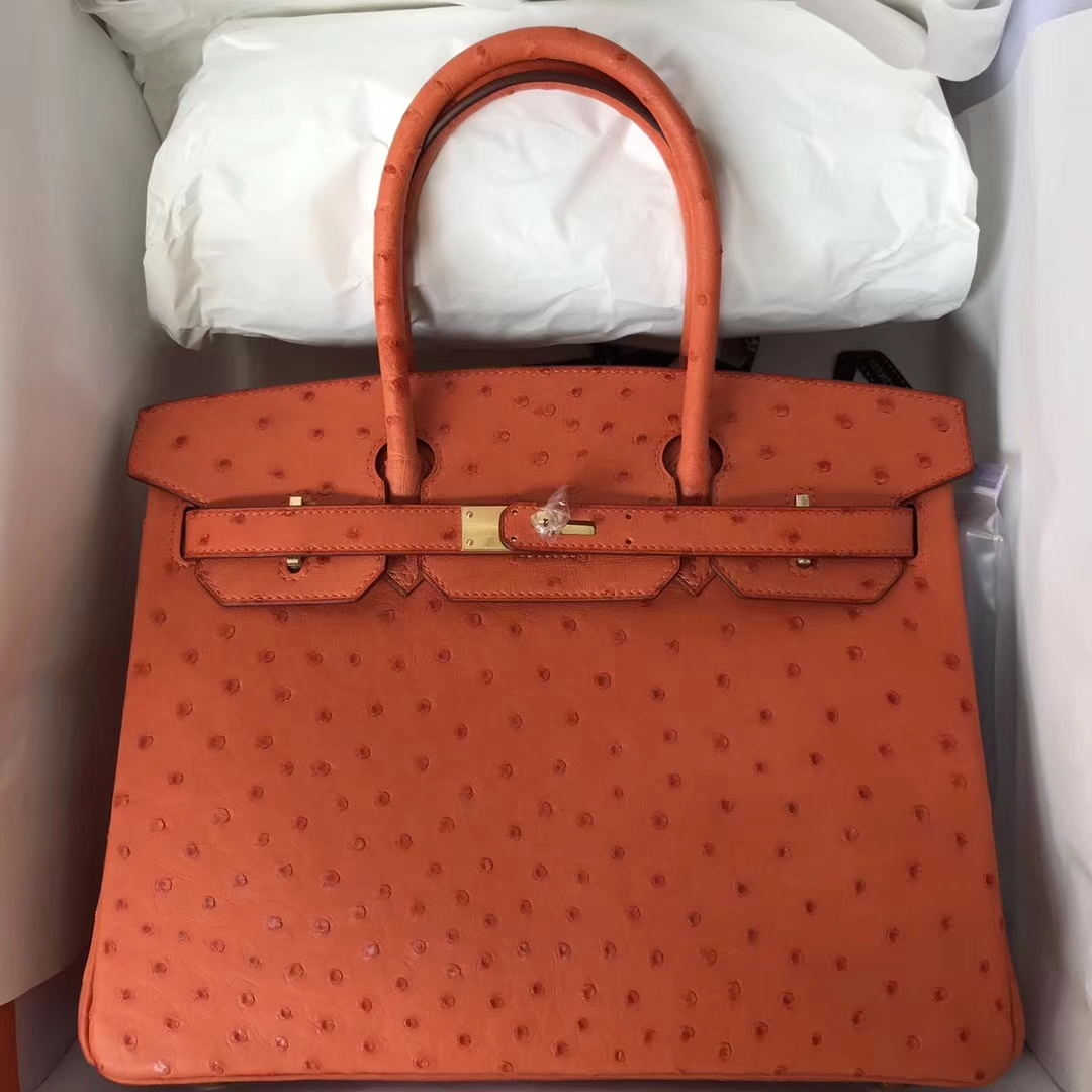 Brand  Hermes  Style  Birkin Bag  Material Ostrich Leather Color CK93  Orange  Size 25cm Hardware Gold Accessories  Padlock fand Keys 5200556a21ae9