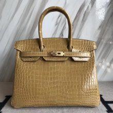 Noble Hermes 1C Poussiere Color Porosus Shiny Crocodile Birkin30CM Bag Gold Hardware