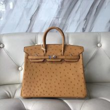 New Hermes OstrichLeather Birkin25CM Tote Bag in Mustard Yellow Silver Hardware
