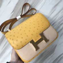Wholesale Hermes Ostrich Leather Constance Bag23CM in 9D Ambre Yellow Gold Hardware