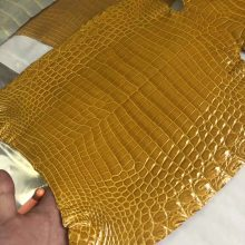 Hermes Bags Customization 9D Ambre Yellow Shiny Crocodile Leather Can Order Kelly25CM