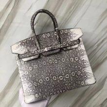 Stock Hermes Lizard Birkin25CM Tote Bag 01 Original Color Silver Hardware