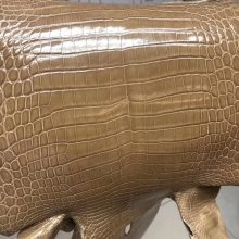 Hermes Birkin Bag Customization 1C Apricot Shiny CrocodileLeather
