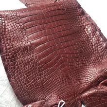 Hermes Birkin/Kelly Bags Order CK55 Rouge H Alligator Matt Crocodile Leather
