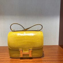 Luxury Hermes 9D Ambre Yellow Shiny Crocodile Constance18CM Bag Gold Hardware