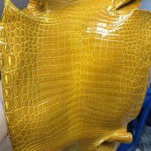 Hermes Birkin/Kelly Bags Customize 9D Amber Shiny Nilo CrocodileLeather