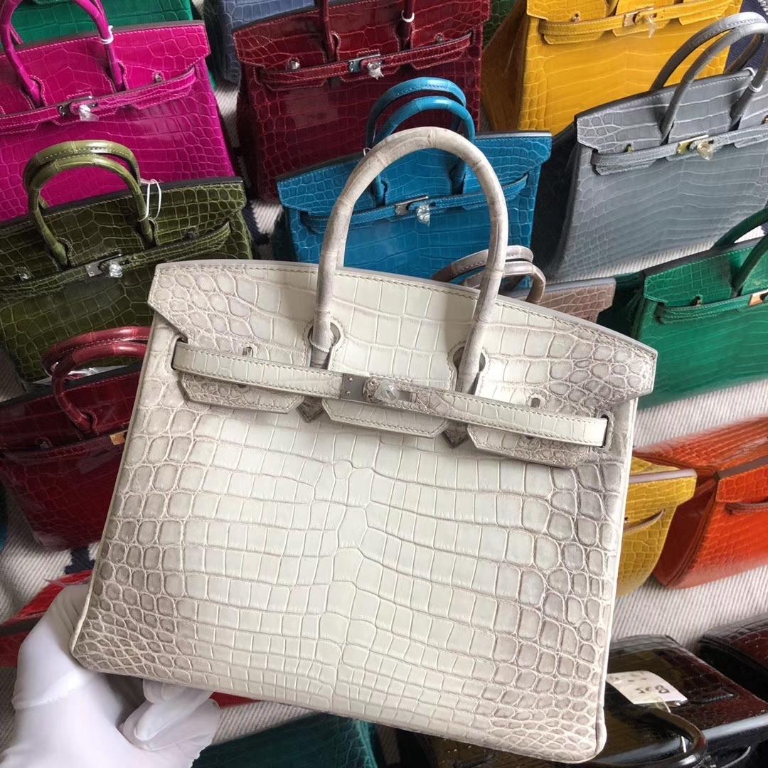 Stock Hermes Himalaya Crocodile Birkin Bag25cm Silver Hardware