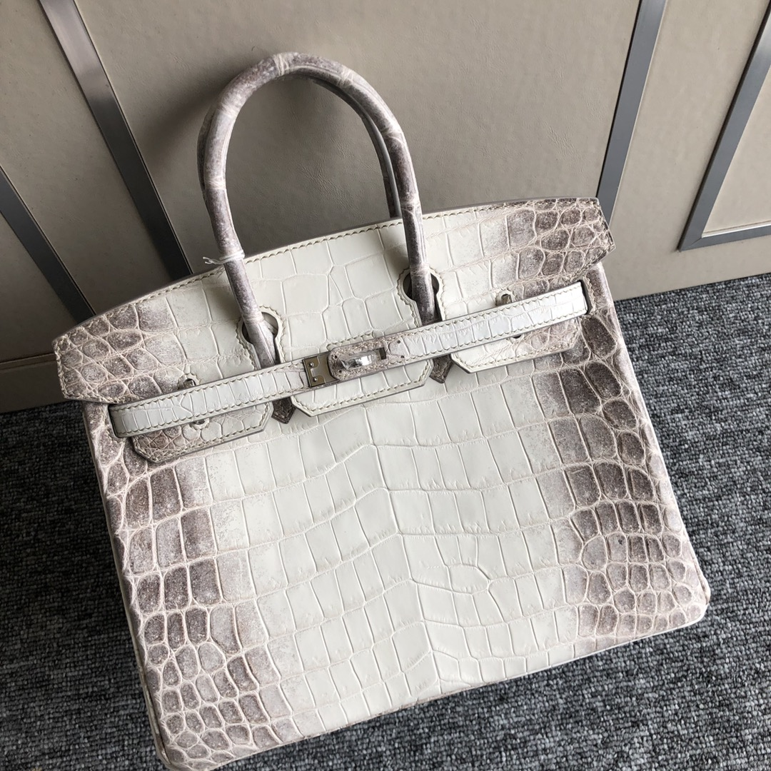 Stock Hermes Himalaya Crocodile Leather Birkin25CM Bag Silver Hardware