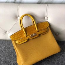 Stock Hermes 9D Ambre Touch Series Birkin25cm Bag Gold Hardware